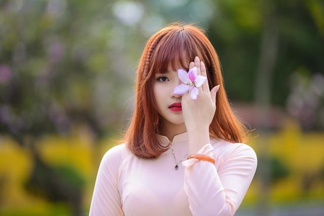 Nữ sinh Hà thành dịu dàng trong sắc hoa ban - 14