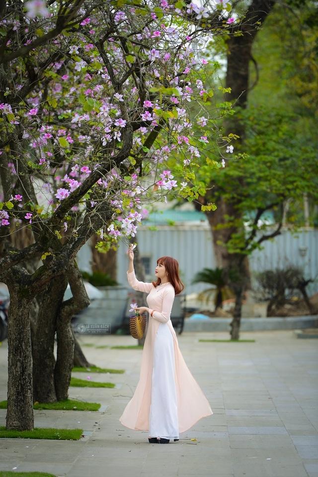 Nữ sinh Hà thành dịu dàng trong sắc hoa ban - 4