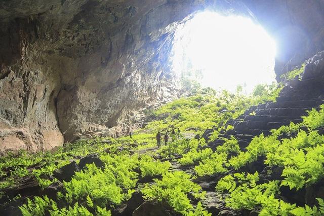... và hang Pygmy