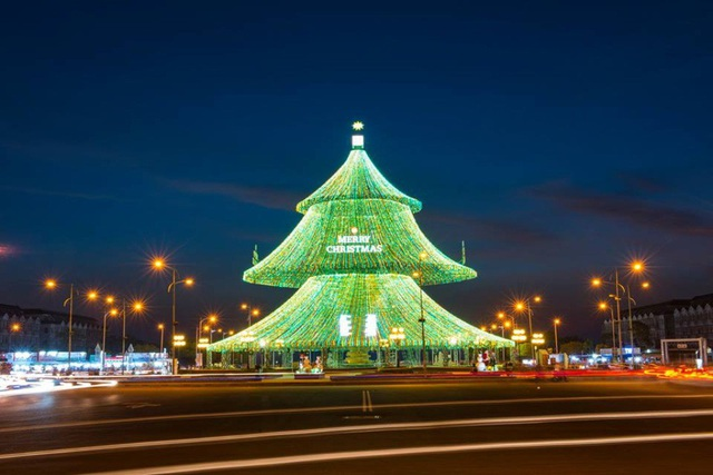 Cây thông tại khu lấn biển Phú Cường - Kiên Giang được cho là lớn nhất Việt Nam khi có chiều cao trên 29m, tán rộng 15m