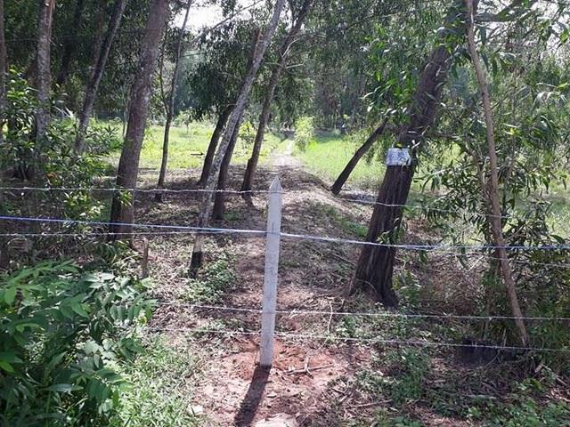 Khu vực đất đang tranh chấp được anh Kiệt cho người đến làm hàng rào thép gai.