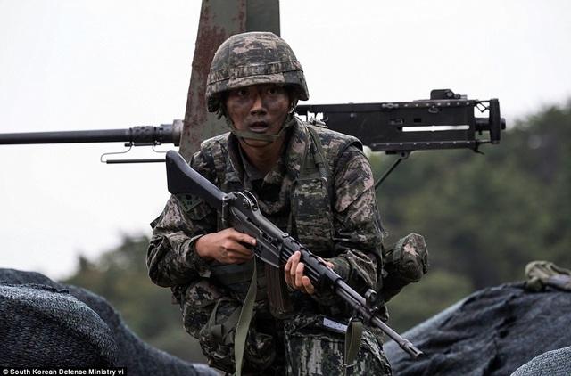 Cuộc tập trận có sự tham gia của 6 lữ đoàn, các máy bay trực thăng AH-1S, các phương tiện tấn công đổ bộ và các binh sĩ thuộc lực lượng thủy quân lục chiến.