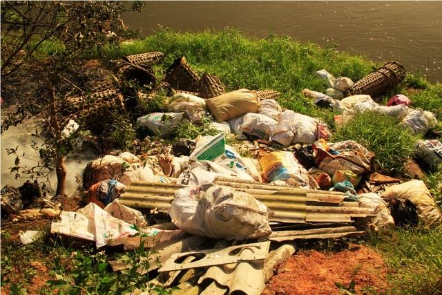 Xác heo được bỏ trong bao tải rồi vứt dọc ven tỉnh lộ 630 dọc sông Kim Sơn đoạn qua xã Ân Tường Tây (huyện Hoài Ân)