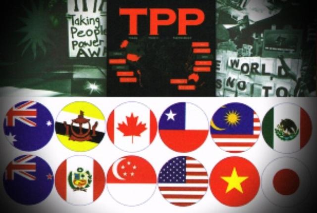 12 nước thành viên tham gia ký kết Hiệp định TPP, nhưng hiện nay Mỹ đã rút khỏi Hiệp định này