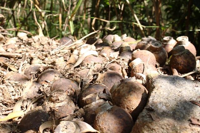 Ổ bom bi được phát hiện trên núi Khỉ