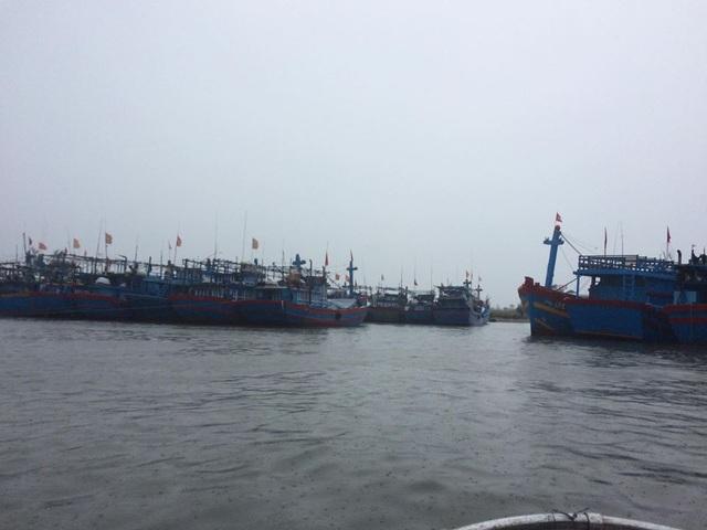 Tàu thuyền của ngư dân Quảng Ngãi vào cảng tránh trú bão
