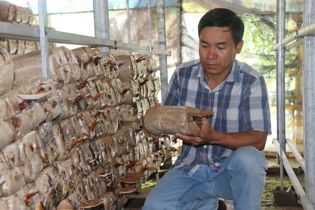 Từ bỏ công việc thành phố, chàng trai trẻ Nguyễn Kinh Bình về quê trồng nấm