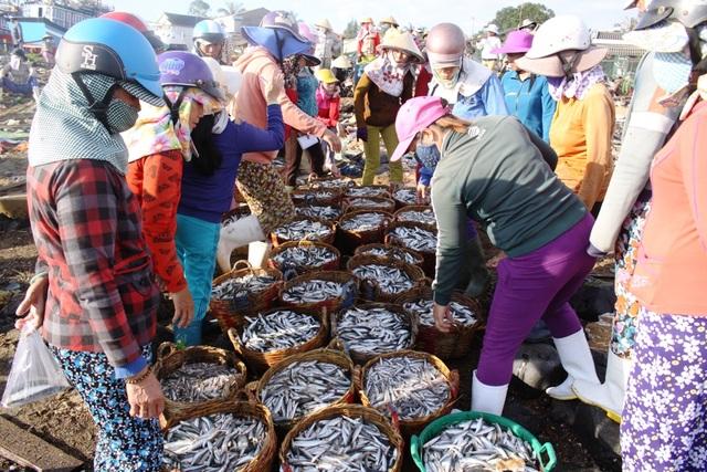Hàng chục thương lái lựa mua cá cơm hấp xuất khẩu.