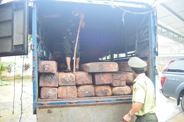 Chi cục Kiểm lâm tỉnh Quảng Ngãi lập biên bản tạm giữ phương tiện và 32 phách gỗ để xử lý theo quy định