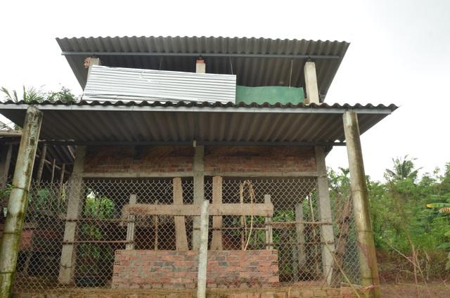 Những ngôi nhà lầu chăn nuôi gia súc được xây dựng vững chãi bằng bêtông với kinh phí đầu tư từ 50 - 300 triệu đồng