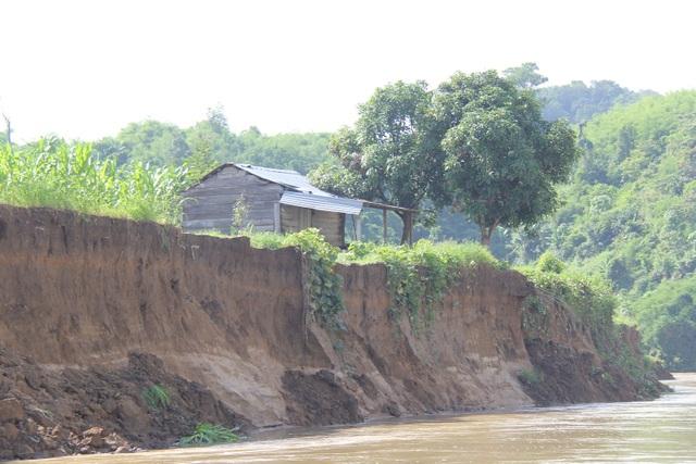 Mặc dù chuyển nhà 4 lần nhưng bờ sông đã ăn sát đến căn nhà của ông Lâm