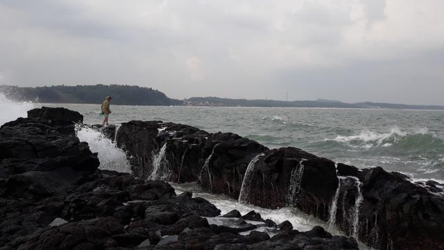 """Đội sóng hái """"lộc biển"""" trên đá nham thạch - 5"""