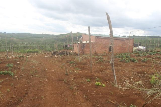 Một số hộ còn xây dựng nhà mà không biết đây là đất quân sự