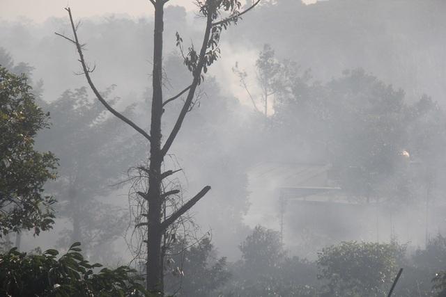 """Những lò sấy đặt san sát, khi hoạt động đã tạo ra một màn """"sương khói"""" dày đặc từ rẫy đến đường"""