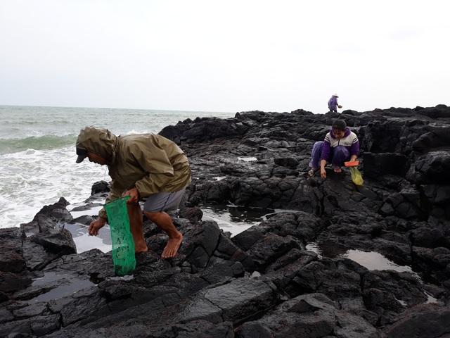 Mùa biển động, rau mứt giúp người dân có thêm nguồn thu nhập để trang trải cuộc sống