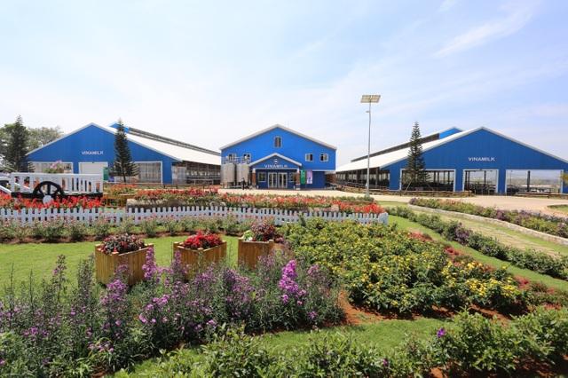 Trang trại bò sữa hữu cơ Vinamilk Đà Lạt là trang trại đầu tiên đạt tiêu chuẩn hữu cơ của Châu Âu tại Việt Nam.
