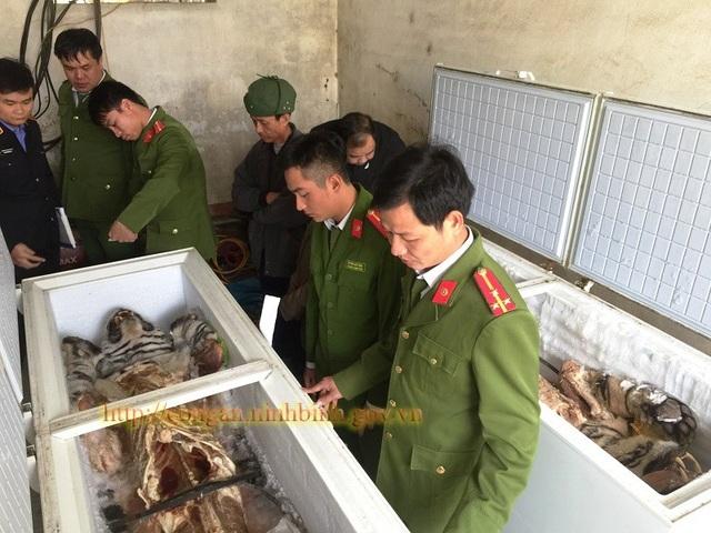 Hai cá thể hổ được cất giấu trong tủ đông lạnh tại nhà dân ở Ninh Bình được cơ quan Công an phát hiện thu giữ (ảnh: Công an Ninh Bình)
