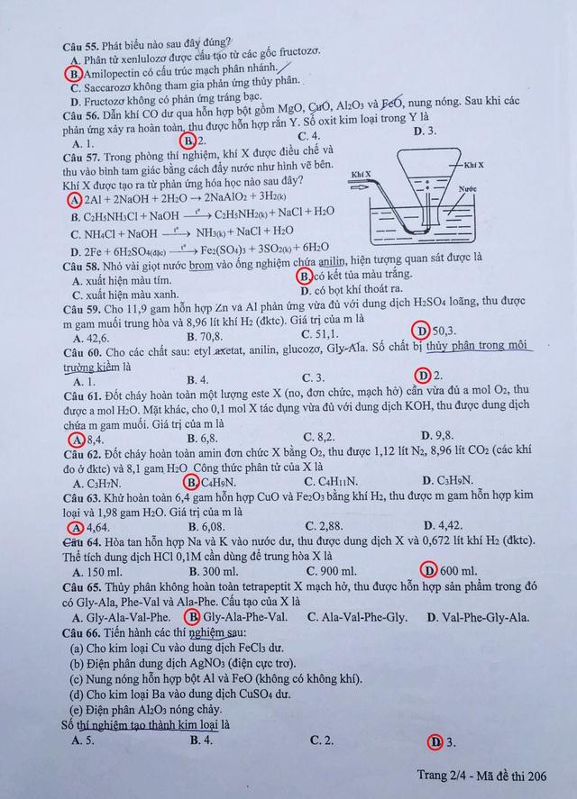 Đáp án gợi ý đề Hóa học kỳ thi THPT quốc gia 2017, mã đề 206 - 2