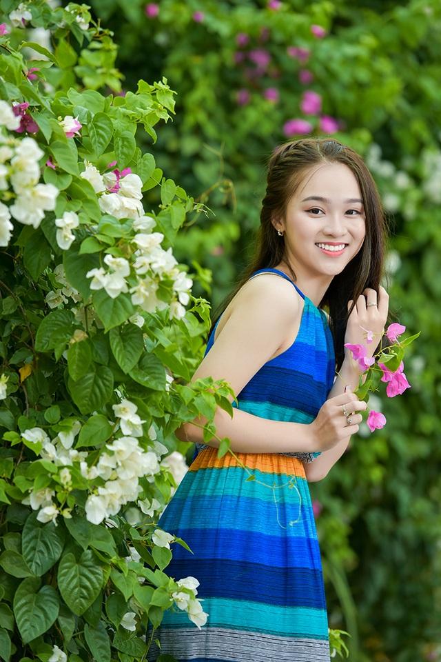 Hoa giấy hiếm khi nở đẹp như thế này ở Hà Nội. Chỉ trong những ngày nắng to, loài hoa này mới rực rỡ nhất.