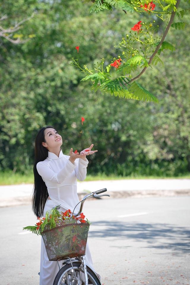 Mùa hoa phượng vĩ ở thành phố mang tên Bác - 13