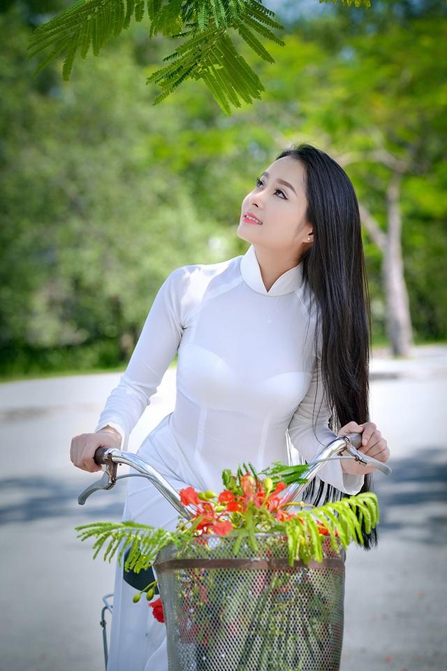 Mùa hoa phượng vĩ ở thành phố mang tên Bác - 20