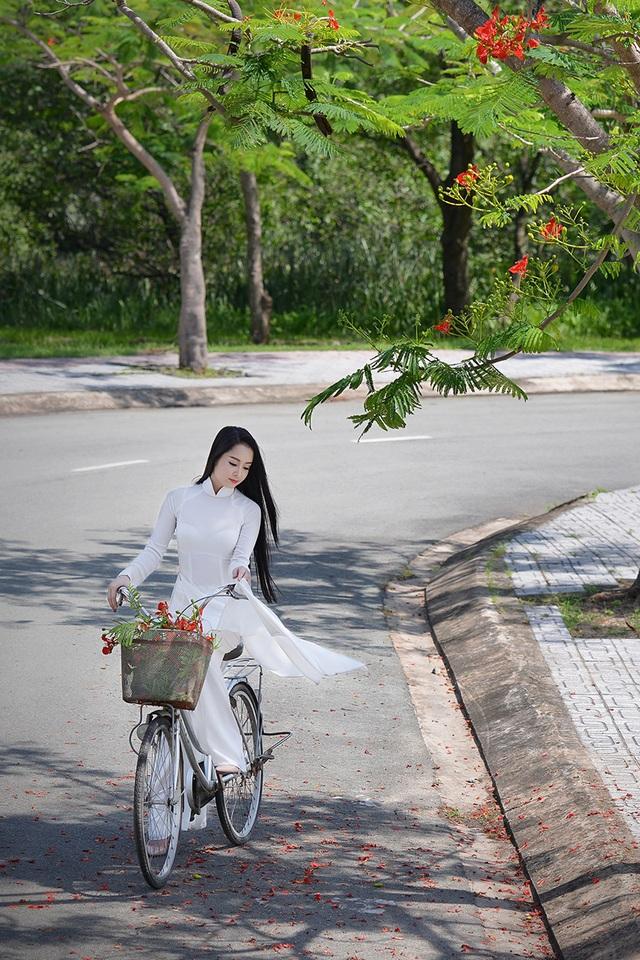 Mùa hoa phượng vĩ ở thành phố mang tên Bác - 23