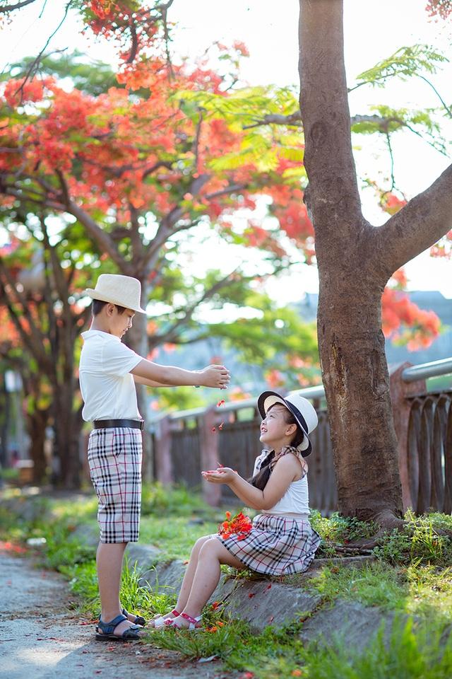 Mùa hè tuổi thơ ngập hoa phượng đỏ của hai anh em tại Hải Phòng - 12