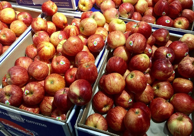 Một số loại hoa quả nhập ngoại có giá rẻ nhưng tại các cửa hàng, hoa quả ngoại được bán với giá tiền trăm hoặc tiền triệu