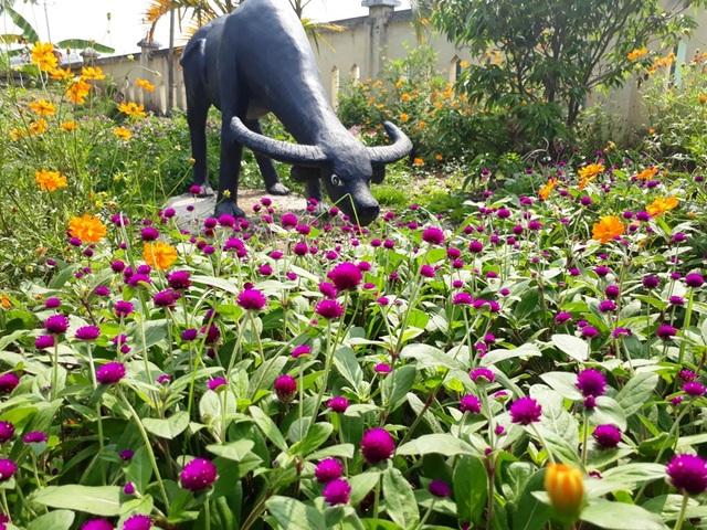 Không chỉ trồng hoa ven đường mà tại các công sở, trường học ở các địa phương cũng được trồng hoa thay thế cỏ dại