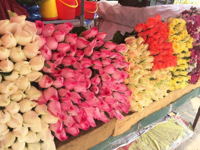 Giá hồng Đà Lạt hiện đang khoảng 5.000 - 7.000 đồng/bông