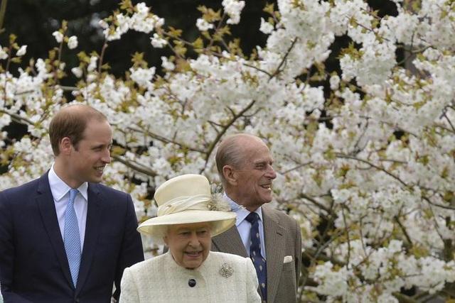 Nữ hoàng Elizabeth và Hoàng thân Philip đi bộ cùng cháu nội, Hoàng tử William, giữa một vườn hoa ở Windsor, phía nam nước Anh năm 2014.