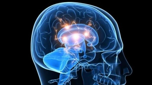 Mang người chết não trở lại cuộc sống - 1