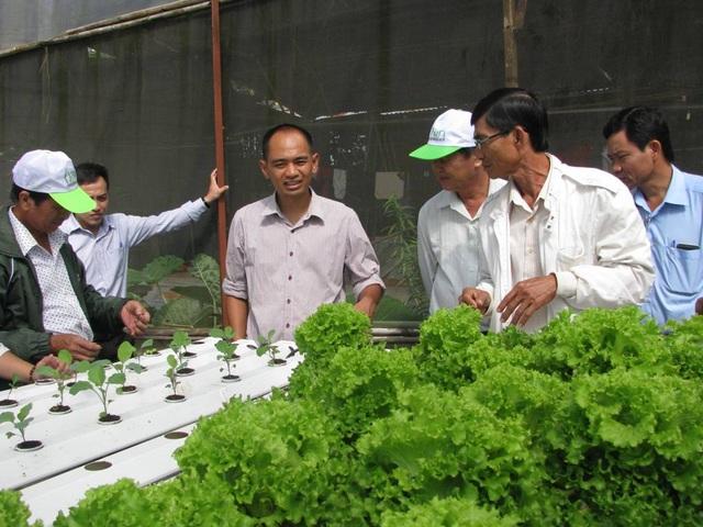 Nguyễn Đức Huy (thứ 3, từ trái sang) chia sẻ kinh nghiệm làm vườn cho các đoàn khách tham quan.