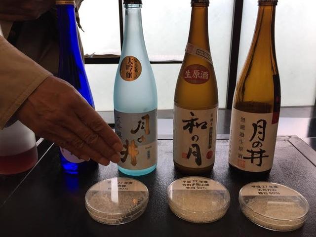 Du khách có thể tham quan vòng quanh những xưởng sản xuất rượu sake lâu đời ở Ibaraki