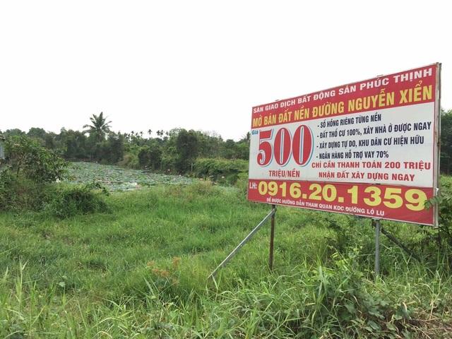 Rao bán đất nền tràn lan
