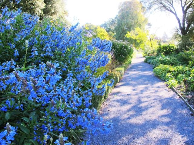 Sau Queenstown, du khách đừng quên ghé qua Christchurch - còn được gọi là thành phố vườn, cũng là nơi đông dân thứ ba của New Zealand