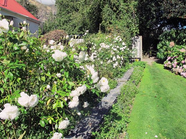 Thời tiết đẹp, nắng, gió, không khí, độ ẩm đạt chuẩn khiến những bông hồng ở đây đều bự cỡ bàn tay người lớn. Mùi thơm ngát của hoa hồng đủ màu sẽ khiến bạn có cảm giác thư thái hơn bao giờ hết