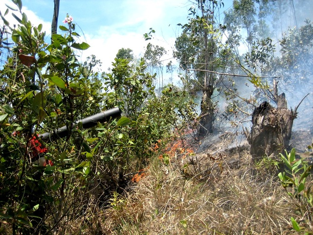 Lực lượng chức năng đang chữa cháy một vụ cháy rừng ở Quảng Nam (Ảnh minh họa)