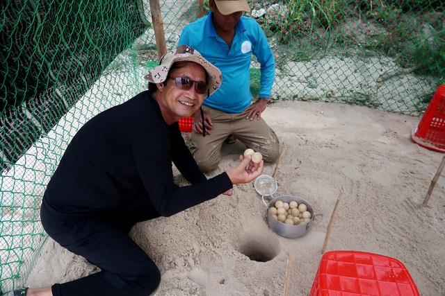 Trứng rùa được đưa về lò ấp. (Ảnh: L.X.A)