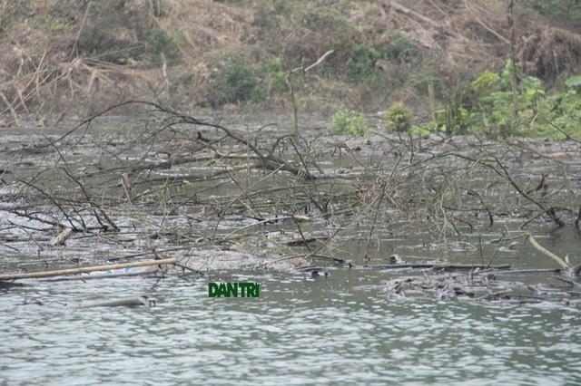 ... lòng hồ lại quá rộng lớn nên việc trục vớt rác thải, cây cối là gần như không thể.