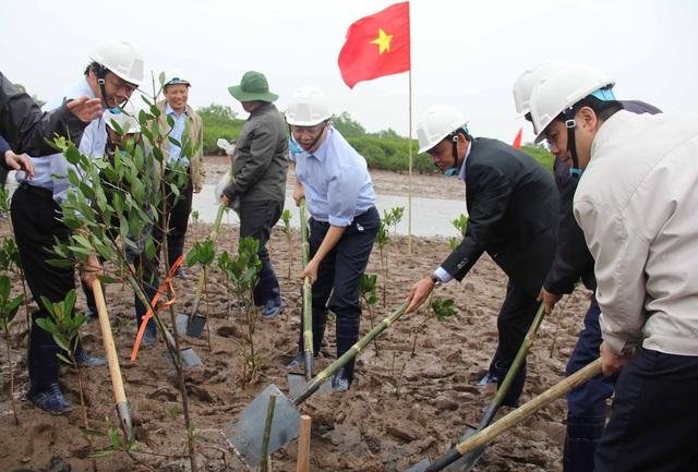 Sau Lễ mít tinh, các đại biểu cùng các tổ chức quốc tế, lực lượng vũ trang, học sinh và người dân đã tham gia trồng cây ngặp mặn tại bãi bồi ven biển của huyện Thái Thụy, tỉnh Thái Bình.