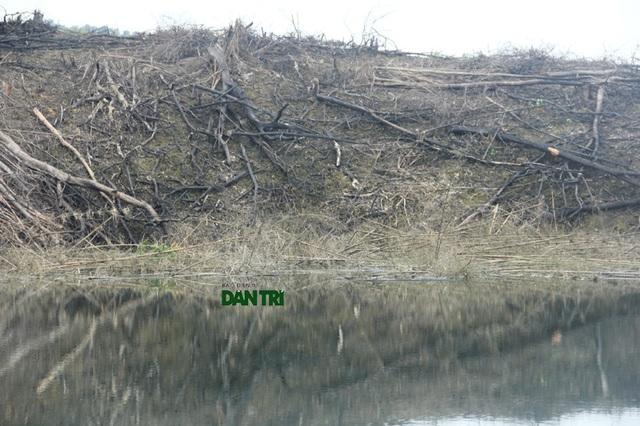 Chỉ cần mưa lớn, mực nước hồ dâng cao khi tích nước, cây cối này sẽ tràn xuống lòng hồ trôi về thân đập.