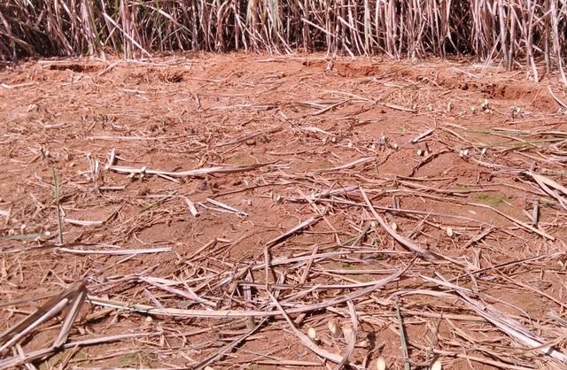 Hiện tượng nền đất có dấu hiệu sụt lún ban đầu