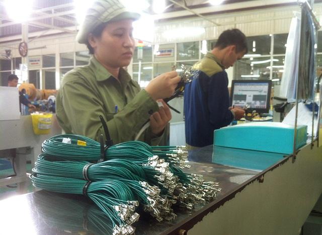 Các linh kiện sản xuất tại Việt Nam, sau hơn 20 năm với các chính sách bảo hộ của Nhà nước, vẫn chỉ là những vật tư có hàm lượng chất xám thấp, giá trị không cao, như dây điện, ghế ngồi, ống xả, vật liệu nhựa...