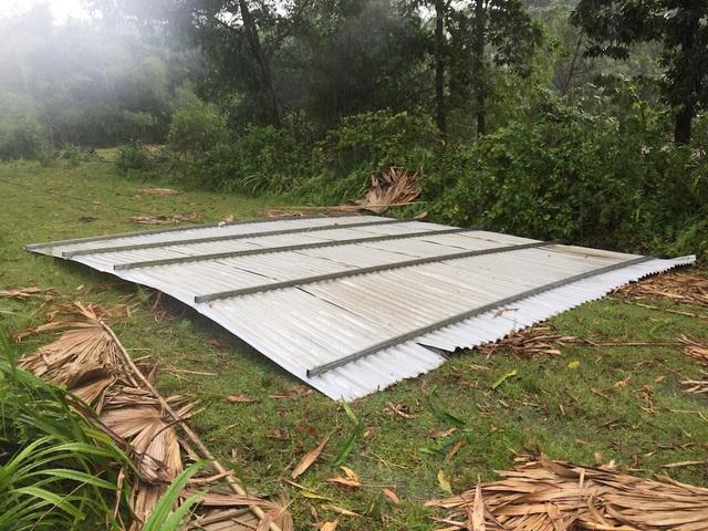 Mái tôn lợp nhà đã bị lốc cuốn đưa đi cách nhà khoảng 10m.