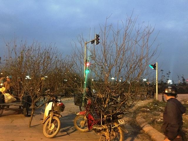 Điểm bán đào ít ỏi còn lại trên đường Nguyễn Trãi, thành phố Thanh Hóa