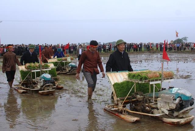 Ông Trịnh Văn Chiến - Bí thư Tỉnh ủy Thanh Hóa đi cấy cùng bà con nông dân