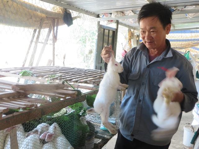 Cựu chiến binh Lê Văn Cững bên trang trại nuôi thỏ của gia đình mình
