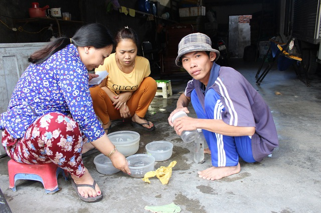 Một thương lái đang thu mua tôm hùm nhí cho ngư dân ở Nha Trang, hôm 6/2