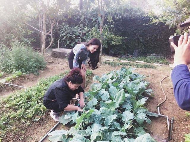 Một trong những lý do khiến NSND Thanh Hoa quyết định chọn vùng ngoại thành để sống là vì có không gian để trồng rau sạch cho cả gia đình. Vì vậy, bà đã tận dụng một khoảng đất trống trong vườn để trồng các loại rau, từ rau cải, cà chua, bắp cải, su hào... mùa nào thức nấy. Mấy năm nay, cả gia đình bà chưa từng phải ăn một món rau nào mua ngoài chợ.